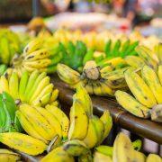 8月7日は「バナナの日」- バナナについて(その2)